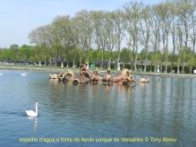 75202 bassin d'Appolon Versailles - 1